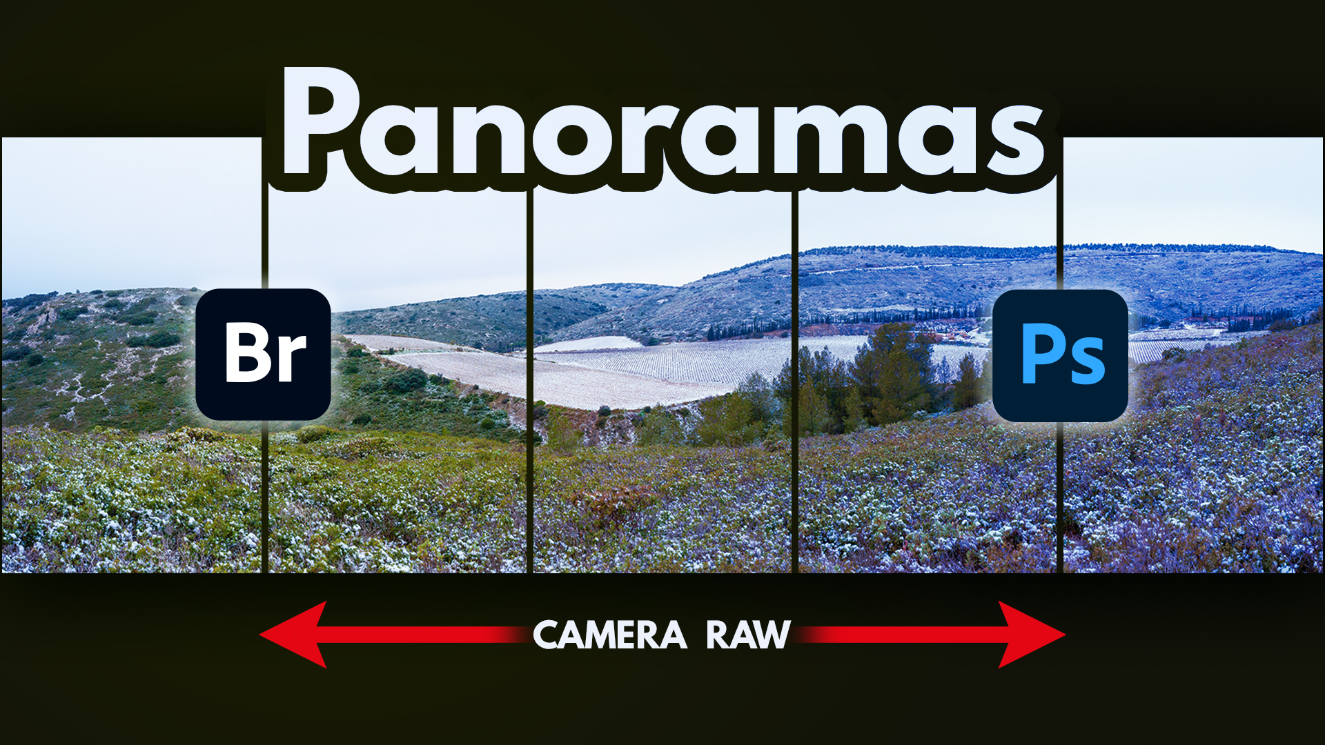 Comment assembler un panorama dans Camera Raw