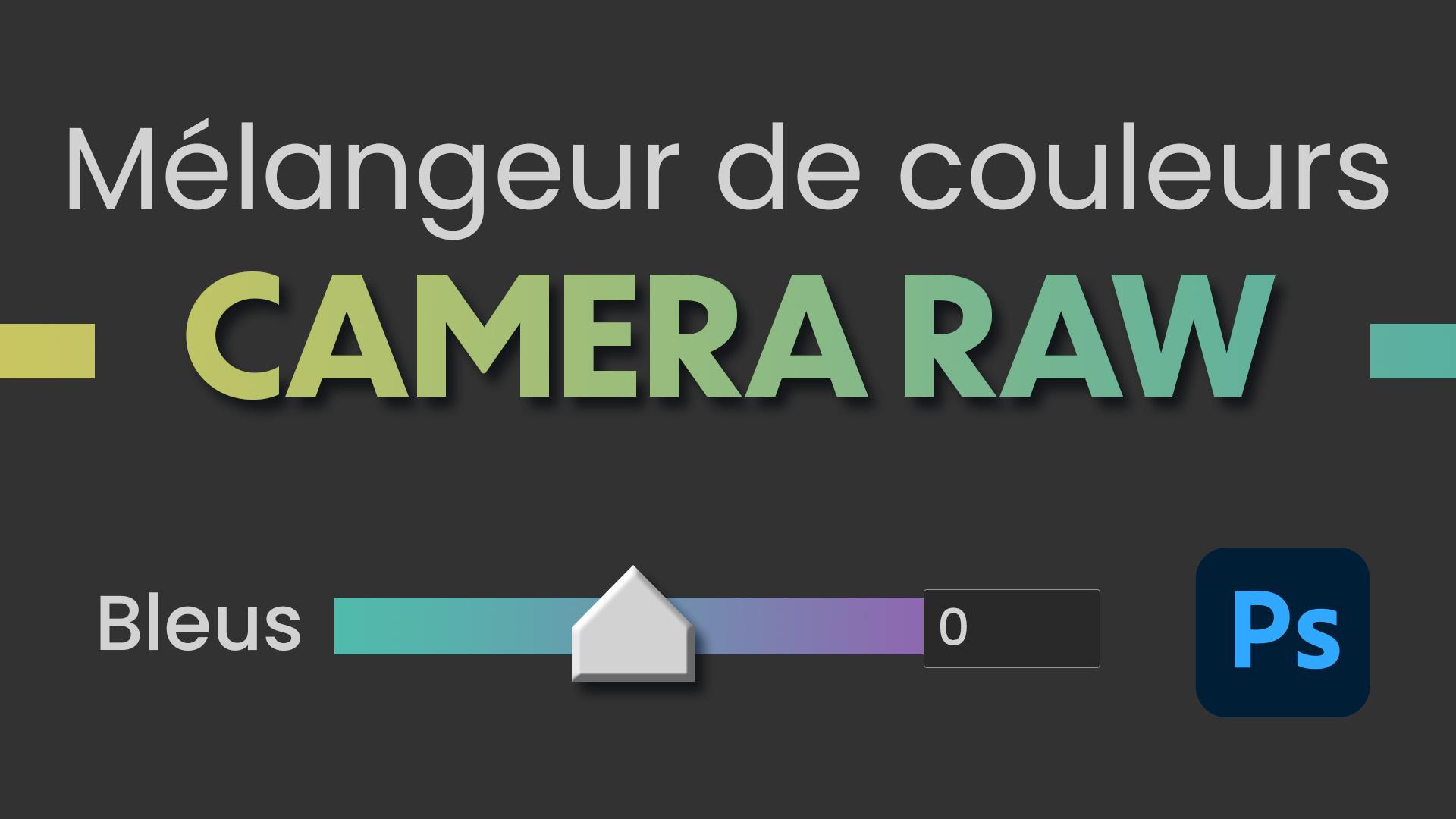 Comment utiliser le mélangeur de couleurs dans Camera Raw